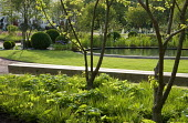Circular pond, timber bench, underplanted trees