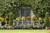 Stone balustrade with Calceolaria integrifolia 'Gaines' Yellow' and Calceolaria 'Kentish Hero' in pots