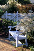 White bench, picket fence, miscanthus