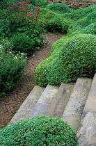 Stone steps, cloud-pruned topiary, herringbone brick paving