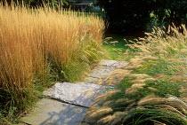 Grasses edging stone steps, calamagrostis, pennisetum