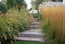 Grasses edging stone steps