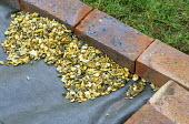 Brick edging to contain gravel mulch, fabric underlay