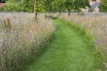 Mown grass path through tall grass