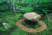 Large round stone in moss