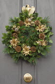 Christmas door wreath with sprayed gold flowers and pine cones