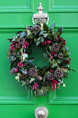 Christmas wreath with chilli peppers and pine cones on green painted front door