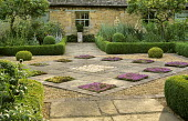 Courtyard, chequerboard paving with thymes, box edged borders, box balls, yuccas, stachys
