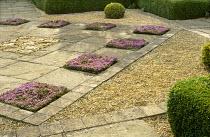 Paved courtyard, chequerboard with Thymus serpyllum 'Minimus', central ammonite mosaic, box balls