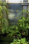 Mirrored wall, raised bed, ferns, reflective surface
