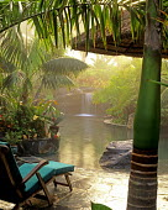 Swimming Pool in residence of Greg Asbagh in Encinitas, CA