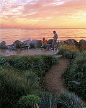 Beach garden in Carpenteria, California designed by Susan Van Atta, view to sea