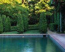 Beverly Hills garden designed by Jacques Wirtz