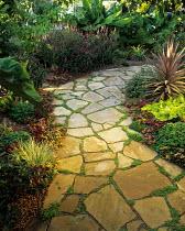Crazy paving stone path