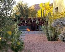Cacti and gravel in desert garden designed by Steve Martino in Paradise Valley, Arizona
