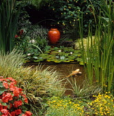 Pond with fish and waterlilies
