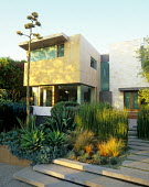 Front garden in Los Angeles, California, stone path