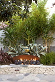 Fireplace, raised bed with agaves, bamboos and yuccas