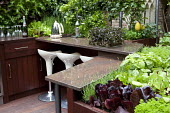 Outdoor kitchen, edible planting, lemon tree