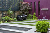 Contemporary water feature on purple painted wall, Acer palmatum, black stools