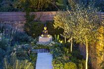 Path leading to buddha, up lit olive trees, Alchemilla mollis