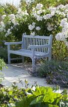 Blue bench, Rosa 'Sally Holmes'