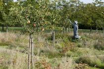Apple orchard, apple-picker sculpture