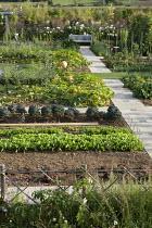 Overview of vegetable garden, bench, pumpkins
