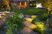 Nicotiana sylvestris, view to summerhouse in contemporary garden illuminated with lights