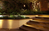 Lit stone steps, raised beds, electric lanterns in tree