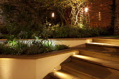 Steps, hanging lanterns, lighting, contemporary town garden, raised beds
