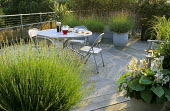 Roof terrace, decking, table and chairs, lavender and hosta in containers