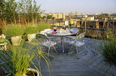 Roof terrace, skyline, decking, table and chairs, lavender in dollytubs, silver birches