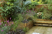Heuchera 'Obsidian', Erysimum 'Bowles' Mauve' in raised beds with eucalyptus, wooden railway sleeper built-in bench seat
