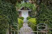 Gate, entrance through yew arch, cloud-pruned box hedges
