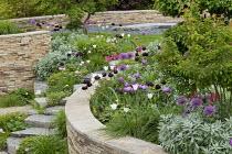 Dry-stone walls, steps, tulips, alliums