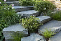 Stone steps through rock garden, Tulipa 'Gabriella', Geranium 'Katherine Adele'
