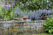 Table and chairs, low dry-stone wall, Allium 'Globemaster', Nepeta 'Six Hills Giant'