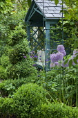 Arbour, box topiary spiral, alliums