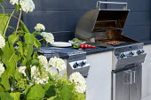 Outdoor kitchen and grill, Hydrangea arborescens 'Annabelle'