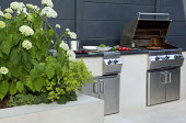 Outdoor kitchen and grill, Hydrangea arborescens 'Annabelle', Alchemilla mollis
