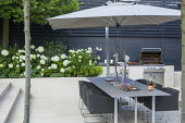 Table and chairs on patio, outdoor kitchen and grill, Hydrangea arborescens 'Annabelle'