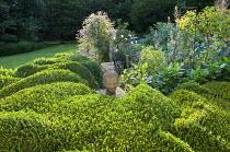 Cloud-pruned box hedges, buddha head