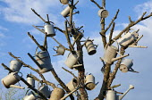 Collection of metal watering cans in tree