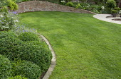 Lawn, cloud-pruned box, brick edging and retaining wall
