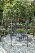 Table and chairs on circular patio under Sorbus aria arbour