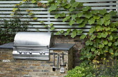 Outdoor kitchen, actinidia on contemporary trellis, fennel