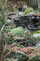 Slate wall water feature, Hylotelephium 'Matrona' syn. sedum, Artemisia arborescens 'Powis Castle'