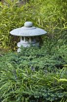 Japanese stone lantern, bamboo, Liriope muscari