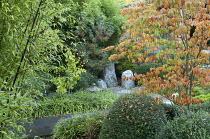 Japanese garden, Liriope muscari, bamboo, Cornus kousa var. chinensis